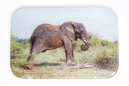 African Elephant Cutting Board, Glass, Hand Imprinted Photo