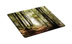 Ambesonne Forest Cutting Board, Autumnal Forest Pathway in T